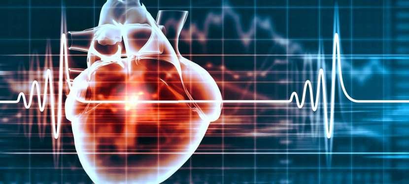La prévention des maladies cardiovasculaires. Un enjeu majeur de santépublique.