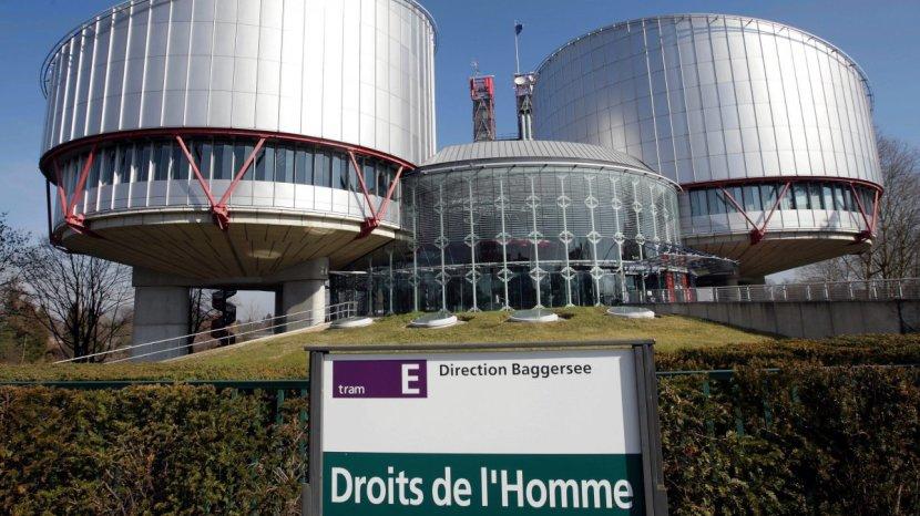 La Cour européenne des droits del'homme