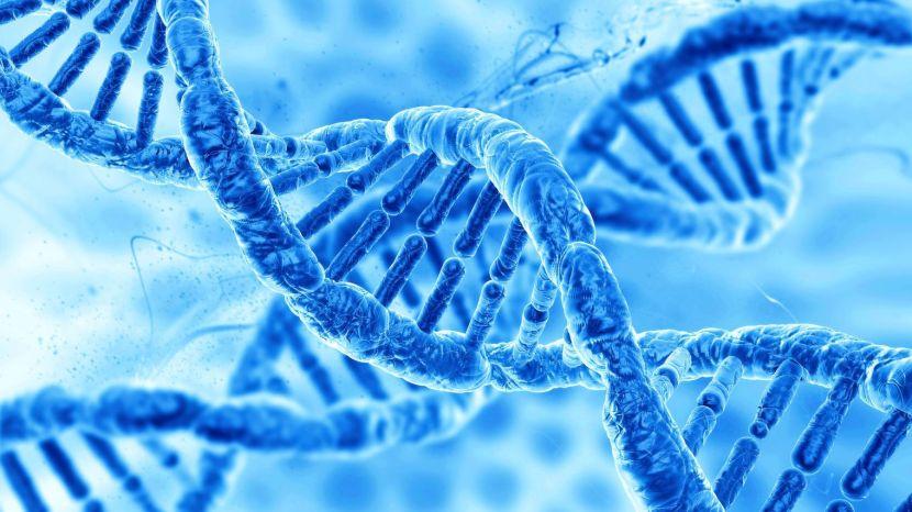 La médecine et la biologie d'aujourd'hui dans les universités et la recherche en France et dans lemonde