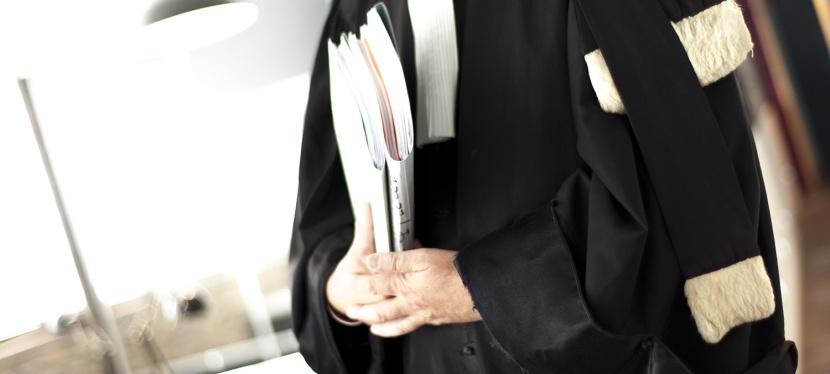 L'avocat de demain